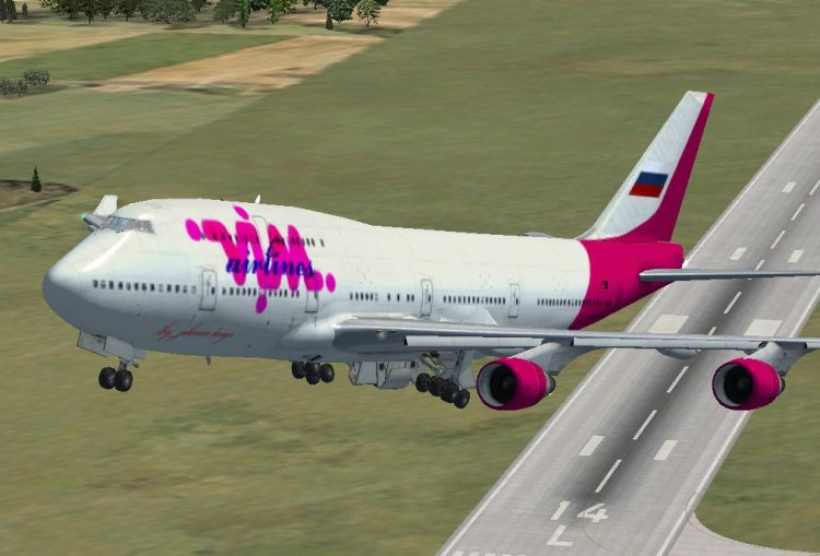 FSX Aircraft Liveries and Textures - Files - Livery VIM