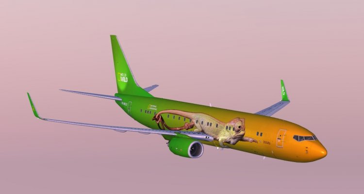 Livery PMDG NGX BBJ2 National Geographic WILD (fictional