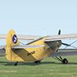 Vitfly24